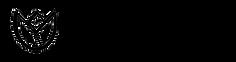 logo_cz.png