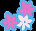 bloemen.png