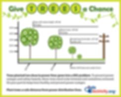 TreePlantingGraphic.png