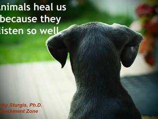 Animals Listen