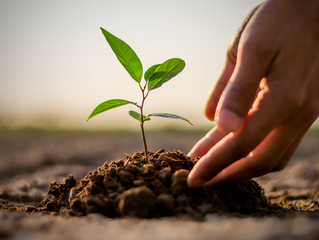 Growth Matters: Getting Life Lessons