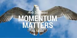 Momentum Matters