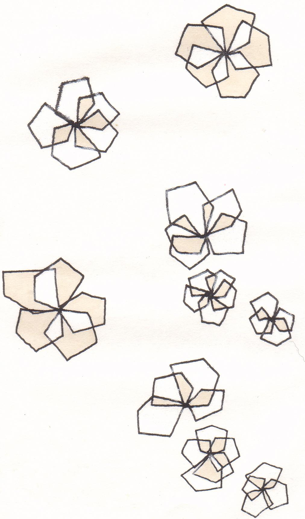 differentialsBits