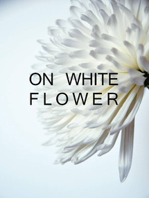 Una fotografia essenziale dove il bianco esalta la forma dei fiori.  Une photo très épurée où l'espace blanc exalte la forme des fleurs.