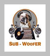 sub-woofer.jpg