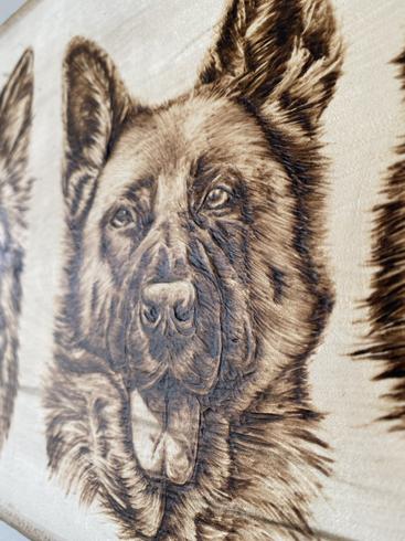 Commissioned Dog Portrait - Detail Shot