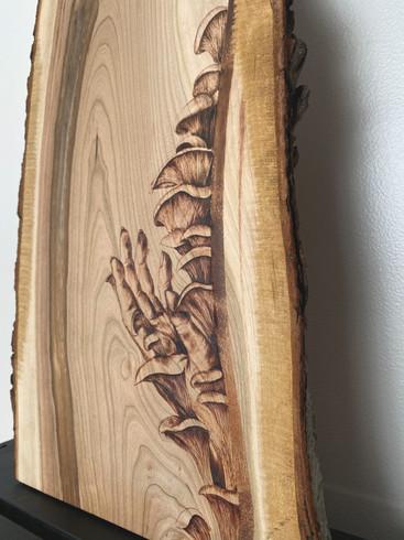 Fungi Charcuterie Board