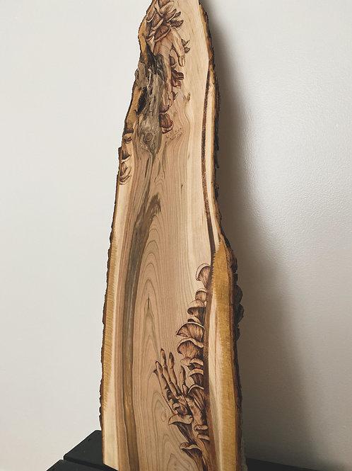 """You're Growing On Me"" Wood Board"