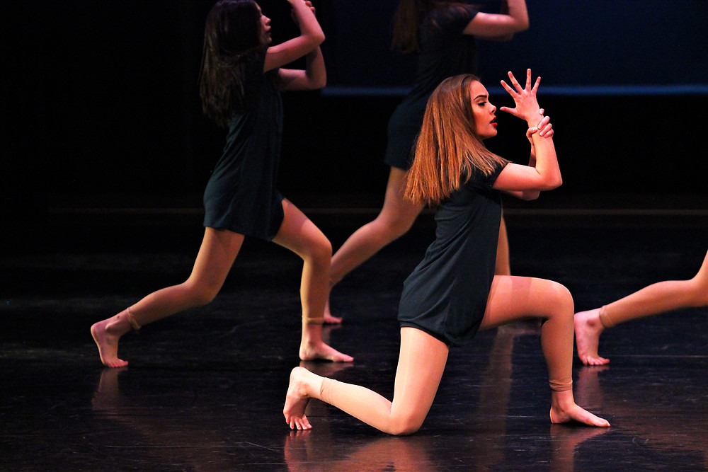 Dance Arts Academy from Boise