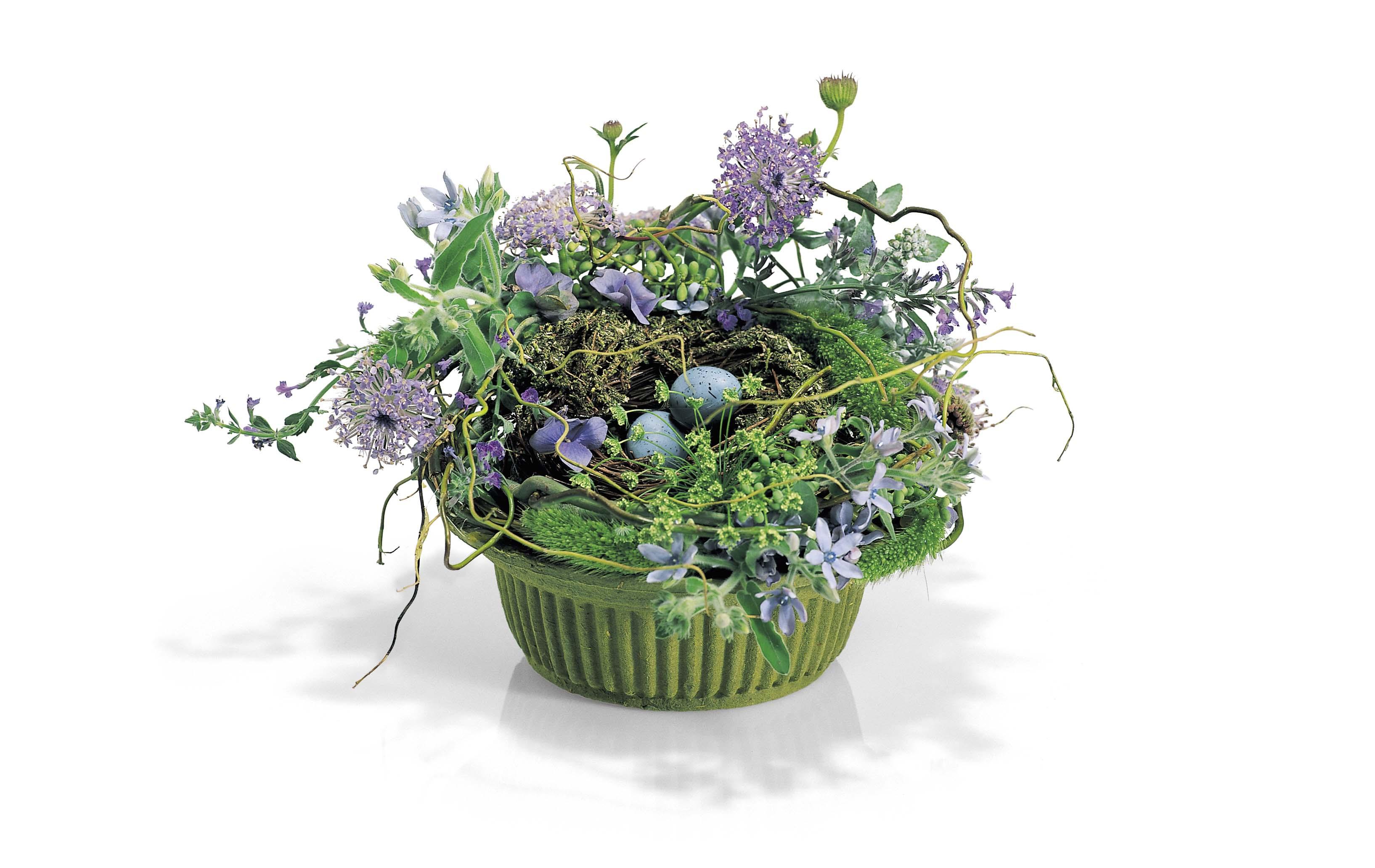 Wildflower with Nest
