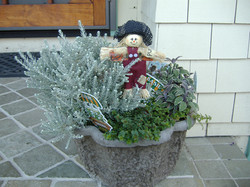 Clover with Herbs and Scarecrow