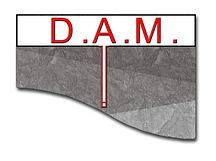 DAM Logo JPG.JPG