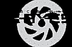 logo hayes.png