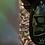 Thumbnail: Garde Boue Peaty's x Marsh Guard - Peaty Repeat recylcé