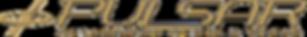 Logo Pulsar Rv03..png