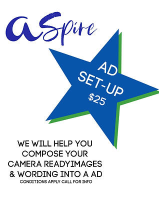 ASPIRE Ad Set Up.jpg