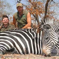 tanzania-safaris-packages-zebra-safari-n