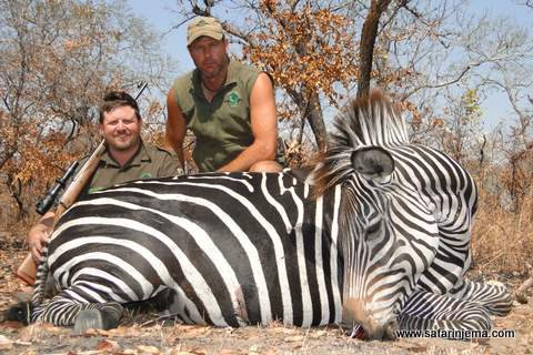 tanzania-safaris-packages-zebra-safari-n