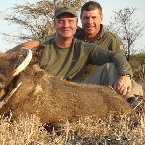 hunting-safari-south-africa-warthog-safa
