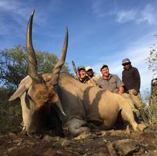 south-african-hunting-safaris-eland-njem
