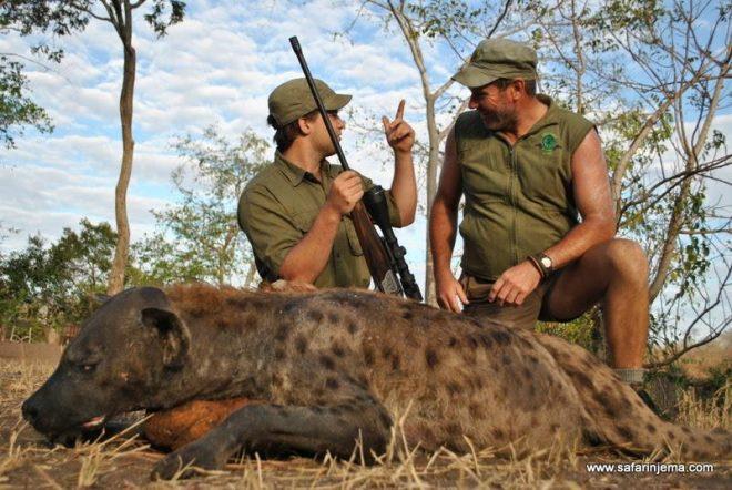 hunting-tanzania-hyena-safari-njema-7-66