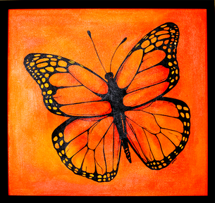 Maraposa