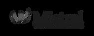 Mistral-Ventures.png
