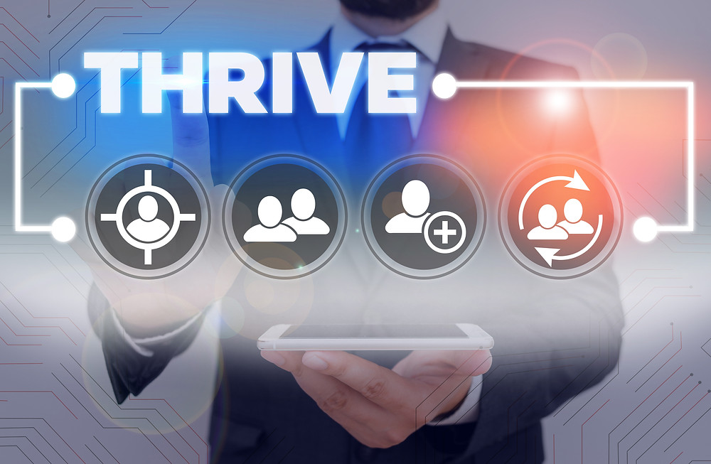 CEO Advice to Thrive