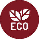 Eco-Friendly-Rio-Cleaners-Icon.png