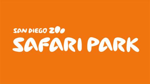 Safari Park - Zip Line