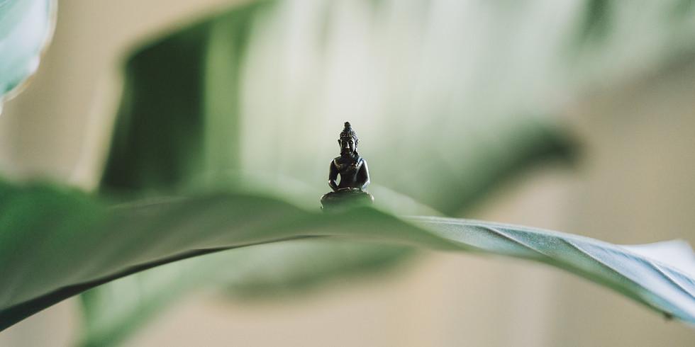 Meditation für EinsteigerInnen