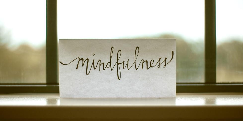 Somatic Meditation - Workshopreihe