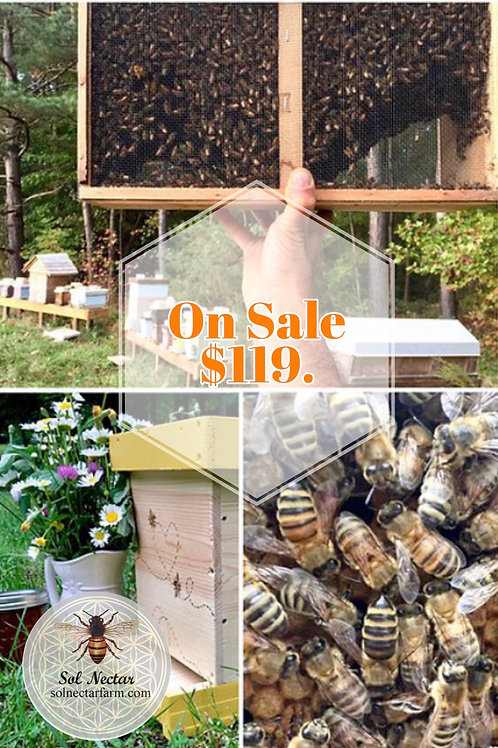 April Package Honey Bees 3lb with Italian Hybrid Mated Queen