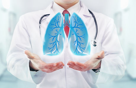 Doctor with lungs in hands in a hospital