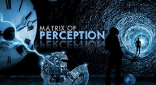 Matrix of Perception Interview