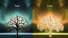 Will  We Choose Love or Fear?