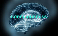 The Consciousness Awakening Code: Bernard Alvarez on The Dr. J Radio Live