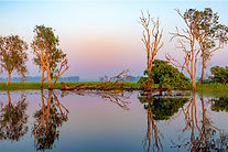 Yellow Water Billabong - Kakadu National Park, Australia