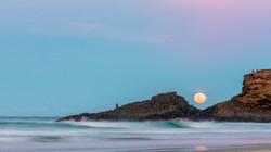 Echidna Moon