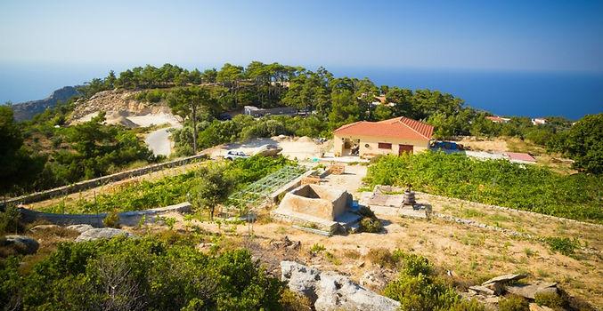 afianes wines greece ikaria wine