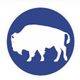 NativeInc_logo%20copy_edited.png