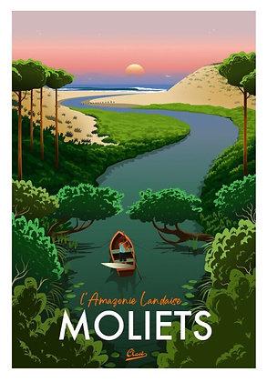 Affiche CLAVE Illustration MOLIETS L'amazonie Landaise