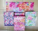 Gift Bags (lg)