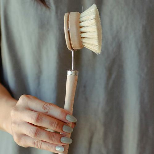 Dish Brush