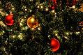 christmas-photo-resized.jpg