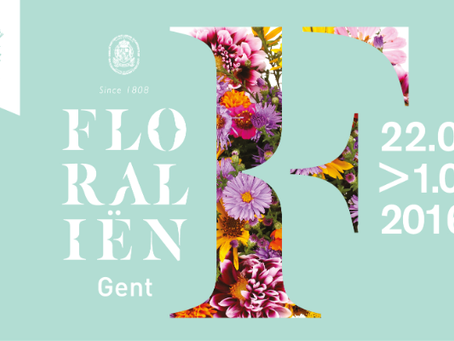 Ghent, 10 days in bloom!