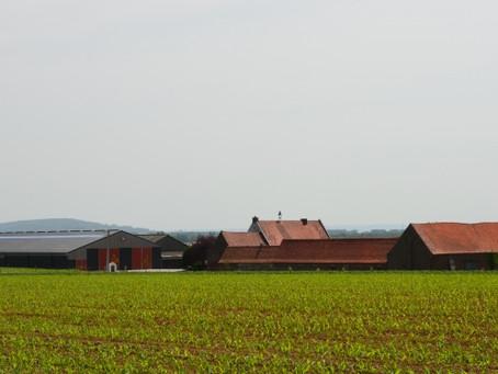 'Afwegingskader actieve landbouwbedrijven' publication