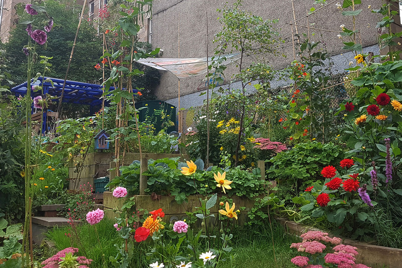 Garnethill Community Garden - elfink.jpg