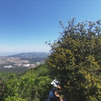 View from Mt Meron