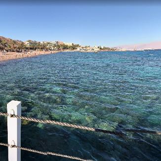 Red Sea Beach View